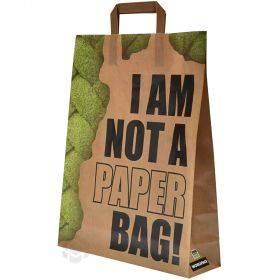 "Sangadega PP-kangast kott ""Not paper bag"" 32+10x41cm"
